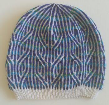 Norwegian style hat